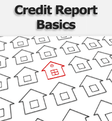Credit Report Basics